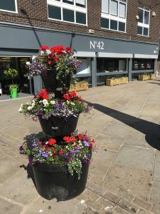 Floral Display in the Market Place, Bishop Auckland