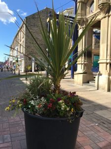 A Floral Display near the Newgate Shopping Centre