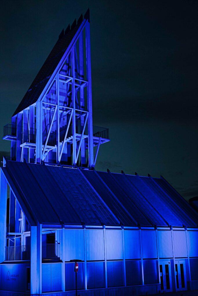 Auckland Tower 12 (Dan Barnett)
